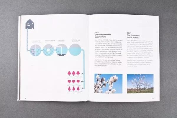 企业画册 开花的树