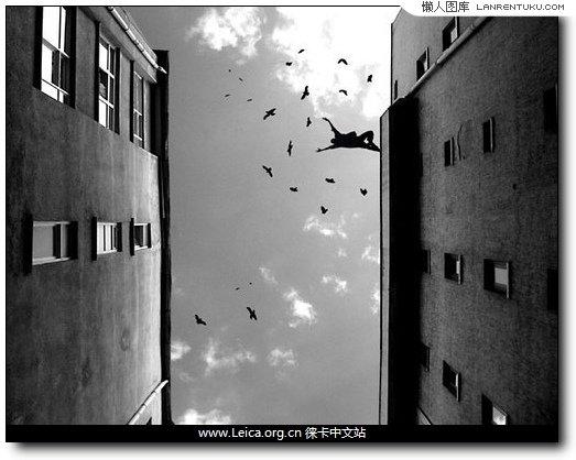 2.仰视拍摄天空,飞鸟和云变成黑白的抽象图案,两侧楼宇的墙壁则在侧光下展现出特别质感